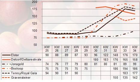 BLE Grafik Apfel Marktbericht KW 34 / 17