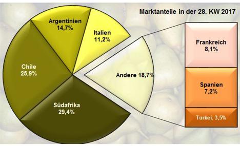 Grafik Quelle BLE-Marktbericht KW 28 / 17
