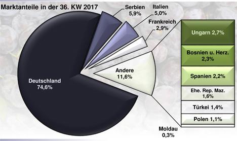 Grafik BLE-Marktbericht KW 36 / 17