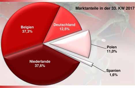 Grafik Tomaten BLE-Marktbericht KW 33 / 17