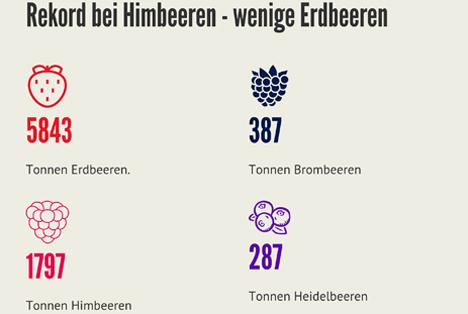 Infografik: Beeren in der Schweiz