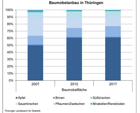 Anbaufläche für Obstbäume in Thüringen nimmt ab