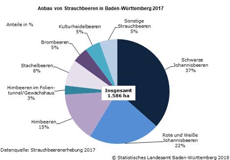 Quelle: Statistisches Landesamt Baden-Württemberg