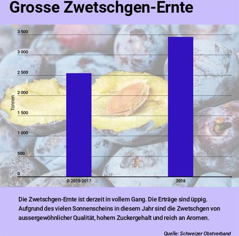 """Lid.ch Infografik """"Reiche Zwetschgen-Ernte"""". Quelle: Schweizer Obstverband."""