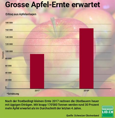 Grafik: Ertrag aus Apfelanlagen www.lid.ch Quelle © Scweizer Obstverband