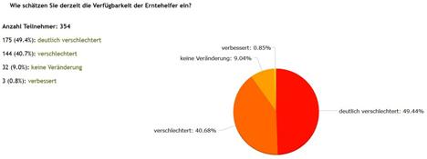 Grafik: VSSE-Umfrage: Einschätzung der Spargel- und Beerenanbauer zur Verfügbarkeit der Erntehelfer