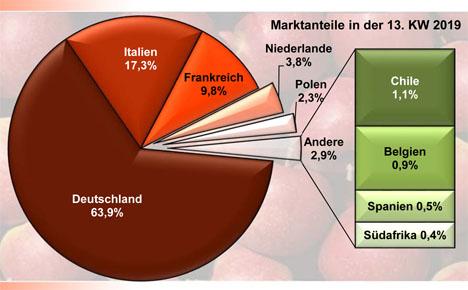 BLE-Marktbericht Äpfel KW 13