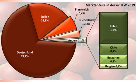 BLE-Marktbericht KW 47 / 19
