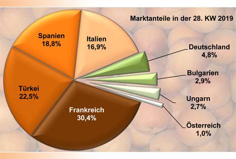 Grafik BLE-Marktbericht KW 28 / 19