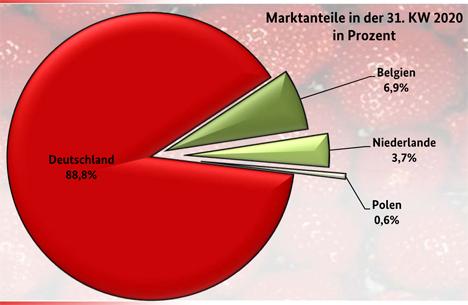 Grafik BLE-Marktbericht KW 31/ 20