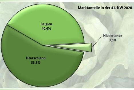 Marktanteile Kopfsalat - BLE Grafik BLE-Marktbericht KW 41/ 20