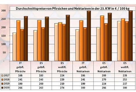 BLE-Marktbericht KW 23: Infografik - Durchschnittspreise von Pfirsichen und Nektarinen