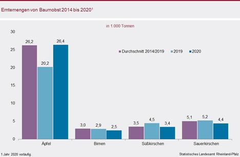 Grafik © Statistisches Landesamt Rheinland-Pfalz