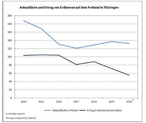 Quelle: Thüringer Landesamt für Statistik Grafik