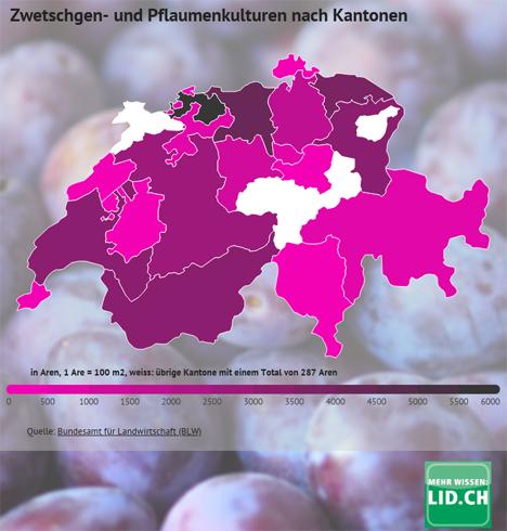 Infografik: Zwetschgen- und Pflaumenanbau in der Schweiz 2018