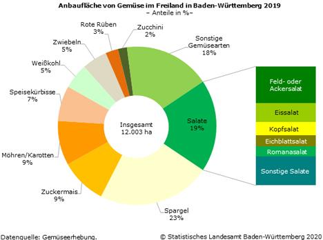 Schaubild 1: Anbau von Gemüse im Freiland in Baden-Württemberg 2019. Quelle: Statistisches Landesamt Baden-Württemberg