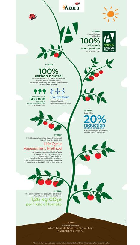 Infografik Foto © Azura-Gruppe