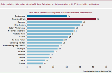 Grafik Foto © Statistisches Landesamt Rheinland-Pfalz
