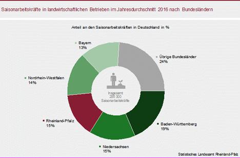 Grafik Bild © Statistisches Landesamt Rheinland-Pfalz