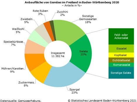 Schaubild 1: Anbaufläche von Gemüse im Freiland in Baden-Württemberg 2020. Foto © Stat BW