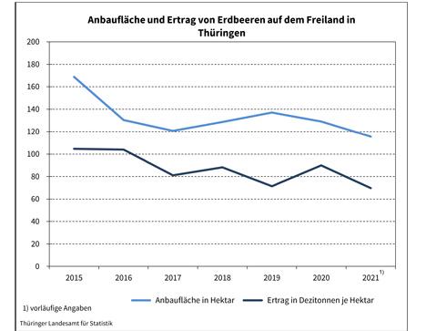 Grafik © Thüringer Landesamt für Statistik