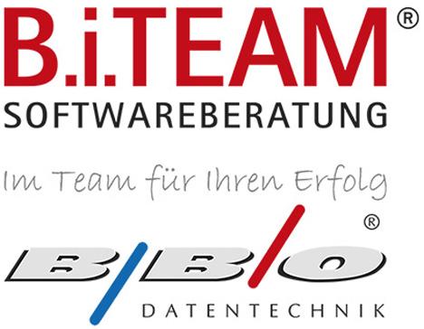 BI Team logo