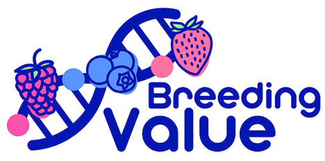 Logo des EU-Projekts BreedingValue Start 2021. © JKI