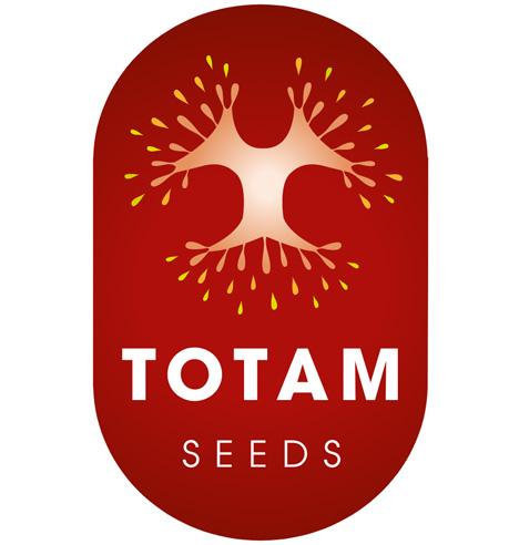 Foto © Totam Seeds
