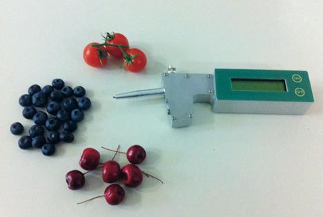 Spotlight auf der Asia Fruit Logistica. Foto © T.R. Turoni srl