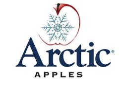 Arctic® logo