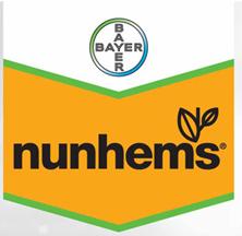 nunhems logo
