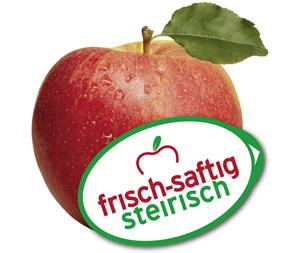 Opst logo