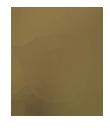 logo fairtrade company gepa