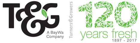T&G Global  Logo
