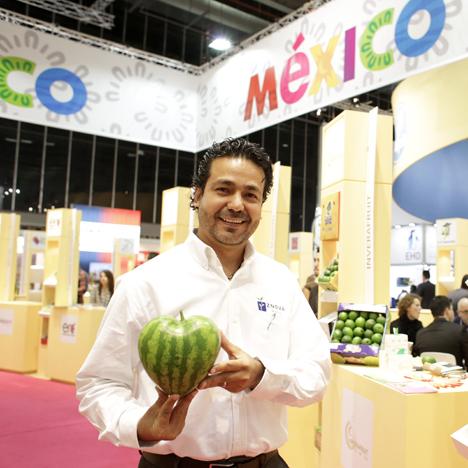 Melonen als Herzen. ZNOVA Mexico