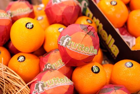 Foto FRUIT LOGISTICA 2016 - Partnerland Ägypten Orangen