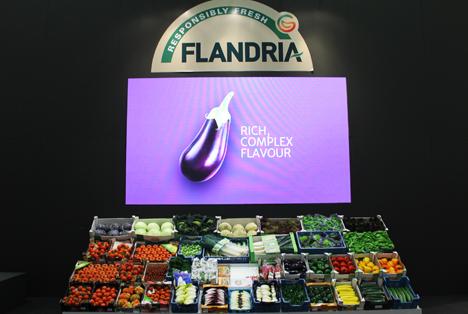 20 Jahre Flandria - Vom Marketinginstrument zum Global Player