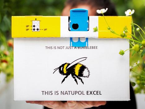 """Natupol Excel – Bee Vision"". Foto Koppert Biological Systems"