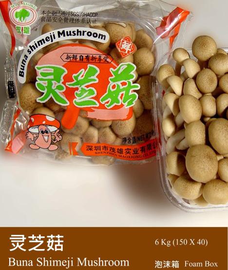 Buna Shimeji Pilze. Foto Yunnan Jiangchuan Huihai Farm Produce Co., Ltd.