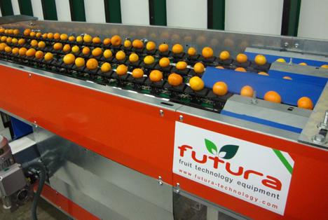 Hohe Anpassung und Kapazität dank modularem Produktionssystem Futura