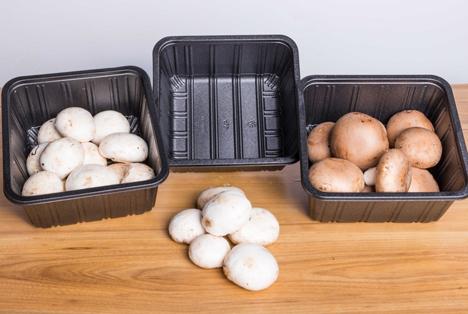 Verpackungsschalen aus Hydrozrob H-PET. Foto Holfeld Plastics Ltd.