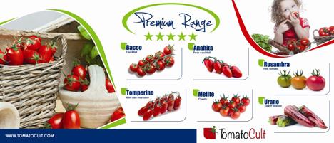 Premium-Sortiment Tomaten MED Hermes s.r.l.