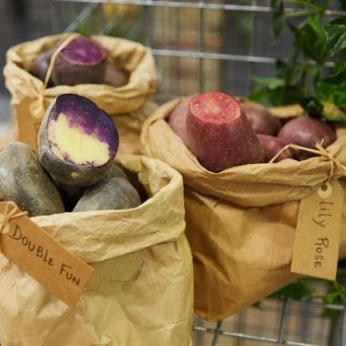 Fruit Logistica Bayard einhundert Jahre alte Kartoffelsorten Messe Berlin