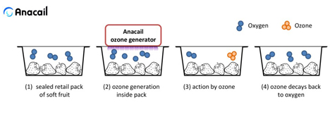 Spotlight Weltpremiere: Anacail In-Pack-Ozonerzeugung