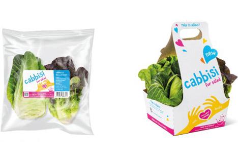 Rijk Zwaan Mini-Salat-Kohl Cabbisi: Einfach zuzubereiten, erstaunlich vielseitig
