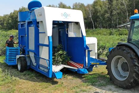Heidelbeer-Erntemaschine KOKAN500S. Foto © Messe Berlin