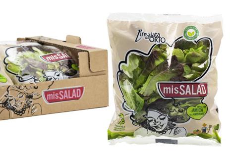 Im Spotlight: Umweltfreundliche Salat-Kollektion