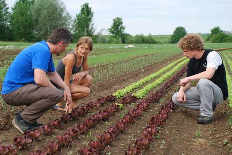 Olga Hänni mit Yves und Beat bei den Freilandkulturen. Foto © VSGP