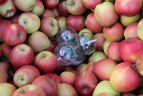 ATB: Neuer Sensor zur Messung der Luftströmung in Kühllagern von Obst und Gemüse