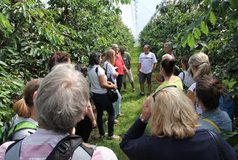 Behördenvertreter aus dem Pflanzenschutzmittelbereich tauschen sich über offene Fragen zum integrierten Pflanzenschutz in der Praxisanlage aus. Foto © BOG/ Disselborg